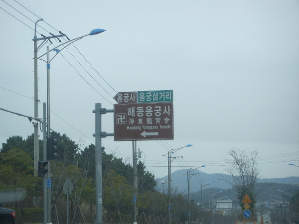 SSL13516.JPG