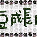 20070519 魔豆成長日記