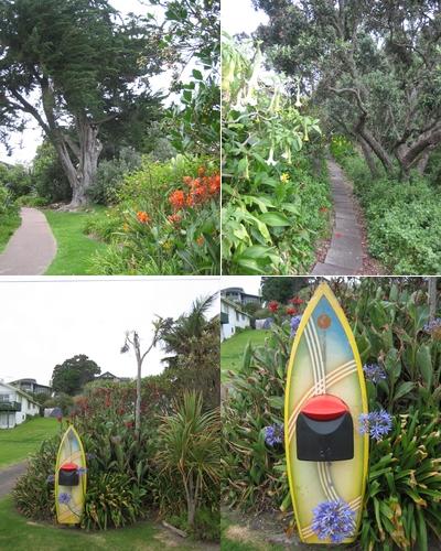 080105 Waiheke Island (下) (9)