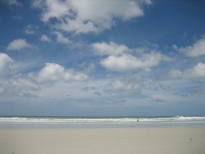080127 Northland 7 - Rarewa & 90 Mile Beach (1)