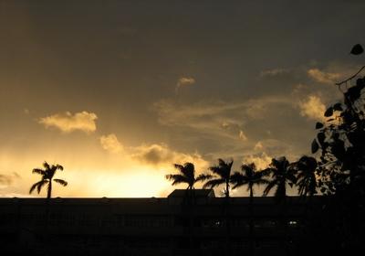 20080727 風雨前的寧靜 (1)