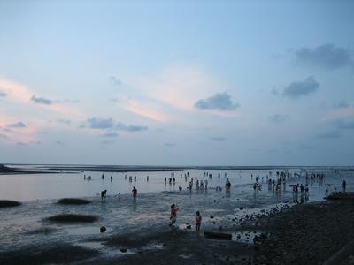 20081030 夕陽西下‧高美溼地 (3)