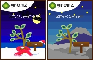 賀!小樹長大了! (3)