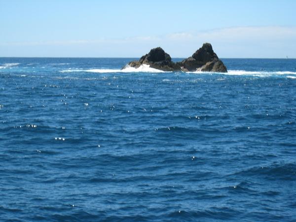 海水正藍!