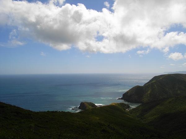 蓊鬱山林懷抱著湛藍大海