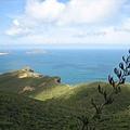 Cape Reinga 一景