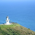 靜靜矗立在Cape Reinga的白色燈塔