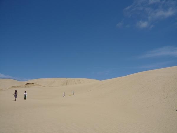 無垠的沙丘