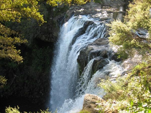 Kerikeri 的 Rainbow Falls 彩虹瀑布