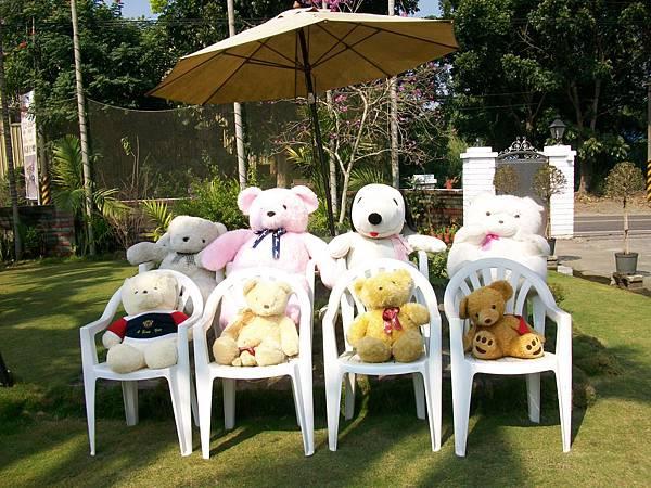 熊熊做日光浴-1