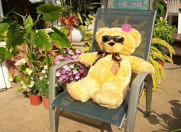 日光浴熊-1