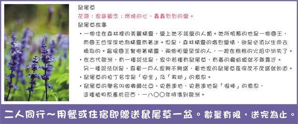 鼠尾草贈送活動~餐廳+民宿.jpg