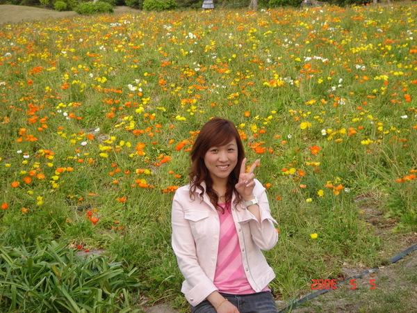 後面的花很美