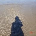 看的出影子映在水中嗎 ?