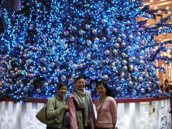 很美的耶誕樹~~