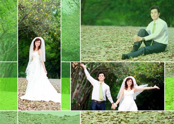 攝影師說......樹葉要從下往上拋啦 !!!!!