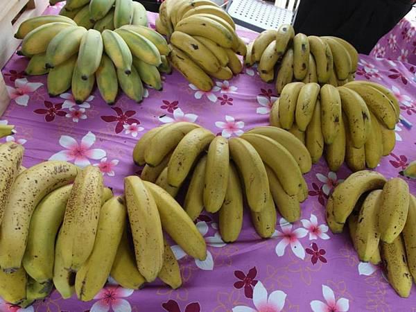 致理幸福農學市集-香蕉