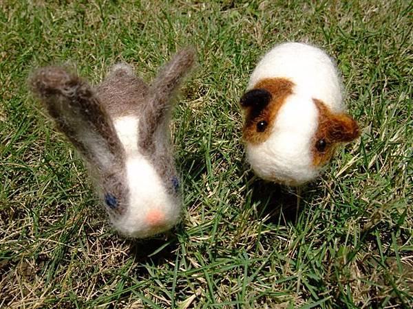 20090520 羊毛氈外拍 004.jpg