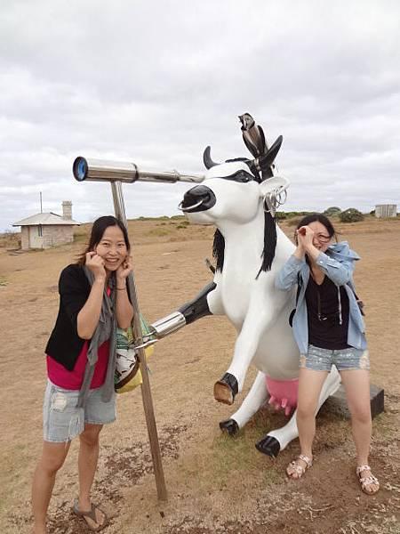2-11.玩玩乳牛兒