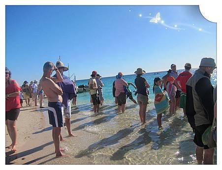 Coral Bay 等待餵魚秀的人兒