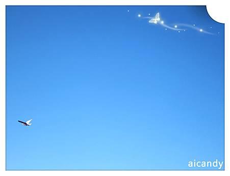 CARNARVON 藍天鳥兒飛