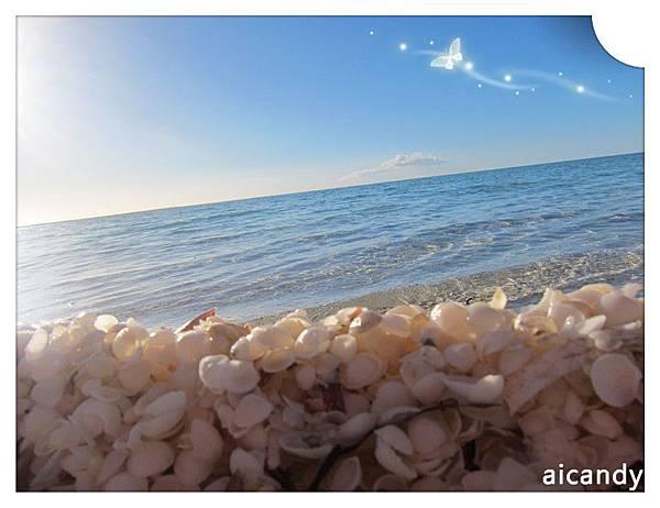 SHELL BAY 貝殼與海~
