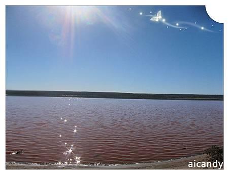 KALBARRI 粉紅湖2