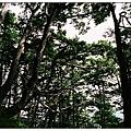 庫哈諾辛山-山景1.jpg
