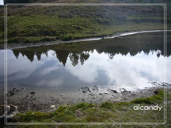 加羅湖-水中倒影11.jpg