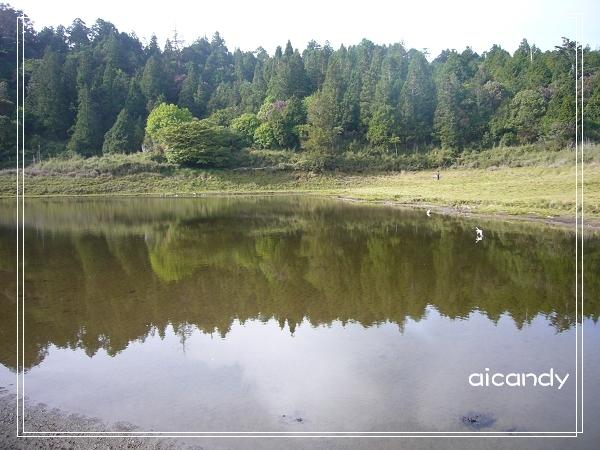 加羅湖-水中倒影13.jpg