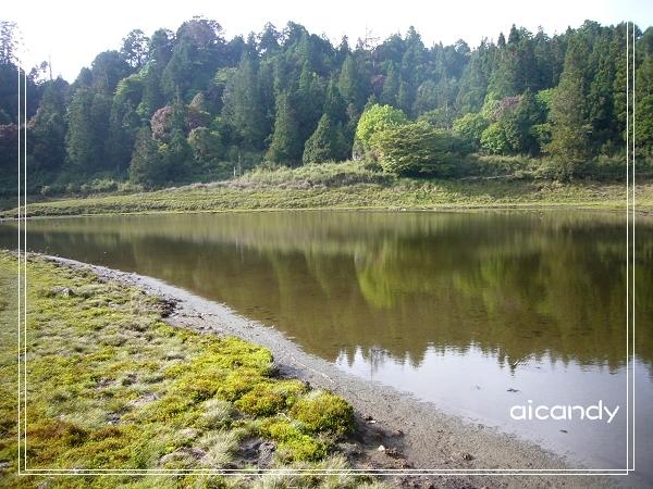 加羅湖-水中倒影15.jpg