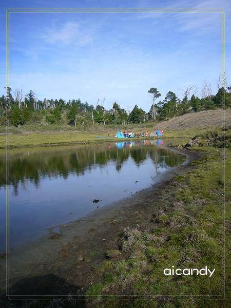 加羅湖-水中倒影16.jpg