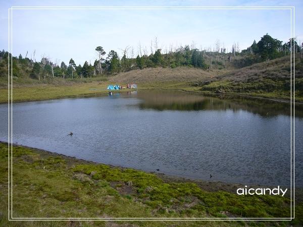 加羅湖-水中倒影17.jpg