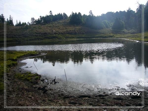 加羅湖-水中倒影20.jpg