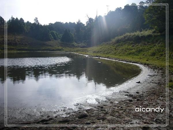 加羅湖-水中倒影21.jpg