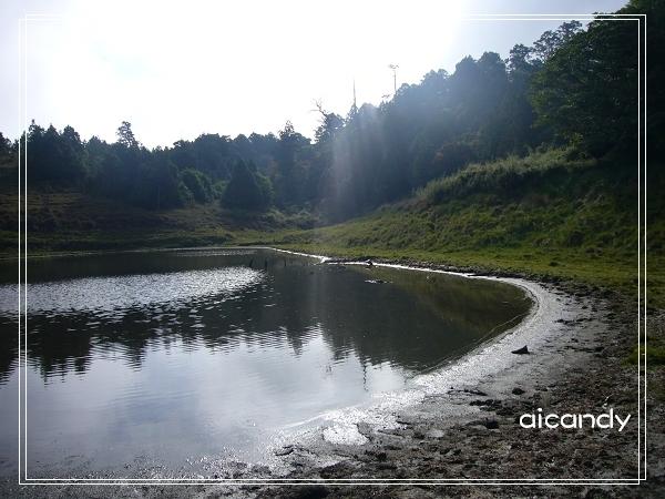 加羅湖-水中倒影22.jpg
