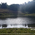 加羅湖-水中倒影23.jpg