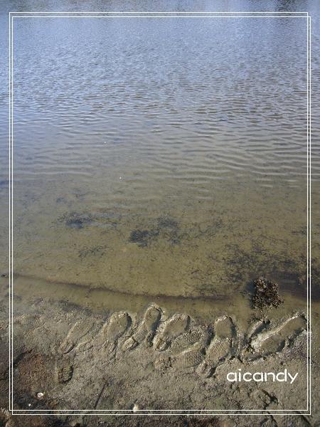 加羅湖-足跡.jpg