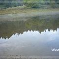 加羅湖-清晨的湖畔3.jpg