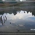 加羅湖-莫名的愛這個景3.jpg