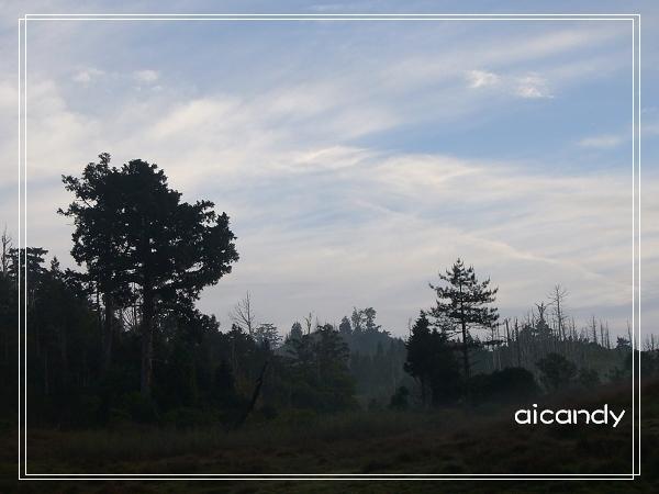 加羅湖-藍天白雲3.jpg
