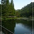 水深植物池.jpg