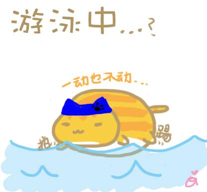 ballcat03swim