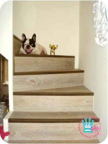 樓梯改造後