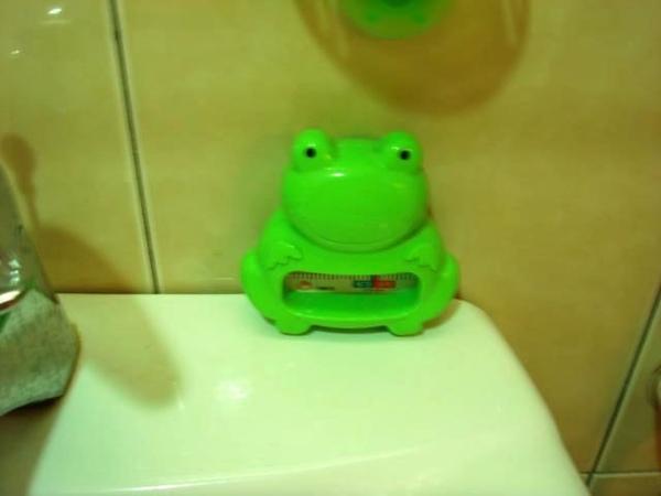 青蛙溫度計