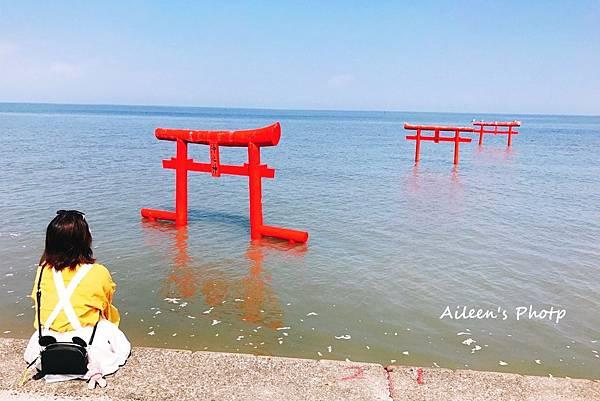 佐賀照片_171101_0018