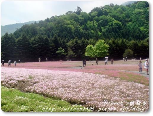 東京2009_0523_120748.JPG