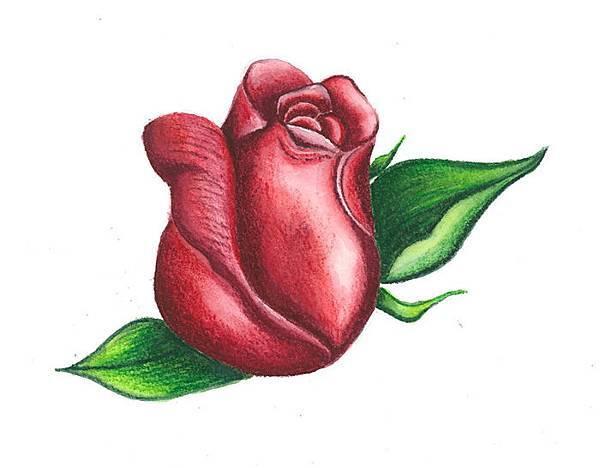 玫瑰花-R拷貝