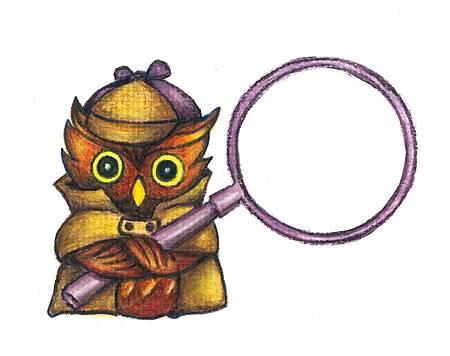 3520 detactive owl-1