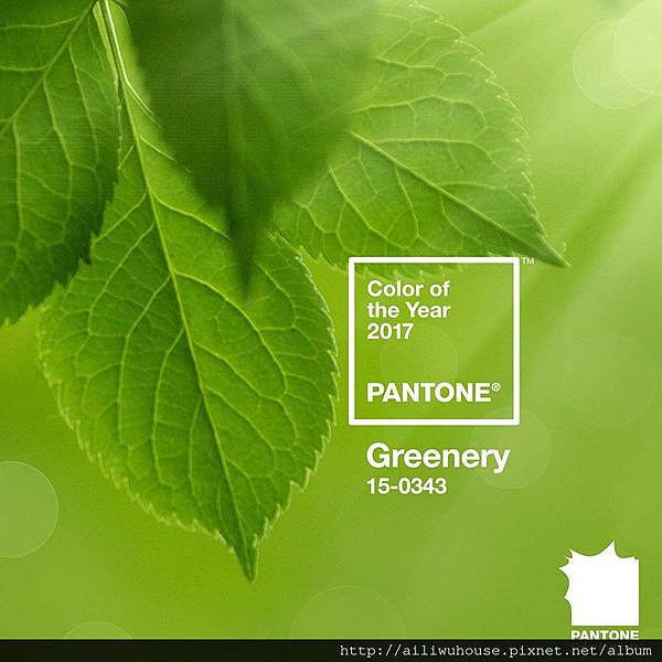 pantone-color-of-the-yeat-2017-designboom-04.jpg